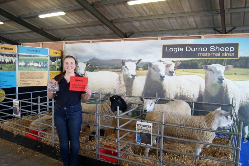 Amy standing infront of the maternal breeds on our stand at Scotsheep